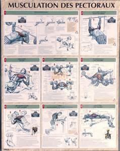 poster d exercices pour la musculation des pectoraux