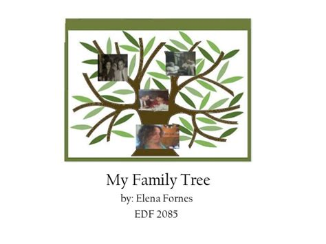 my tree my family tree by fornes