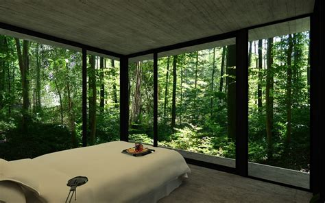 ceiling to floor windows gres house in a forest by luciano kruk homeli