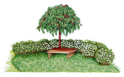 disegno giardino giardini