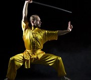 Image result for Deadliest Kung Fu Styles