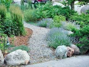 water efficient landscaping captivate western riverside