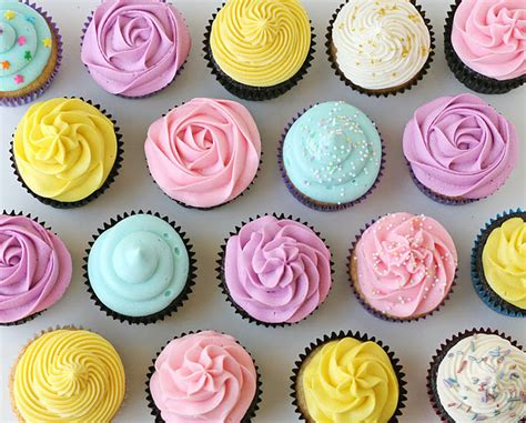 Decorate Cupcakes by Cupcake Basics How To Cupcakes Glorious Treats