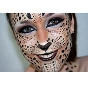 Maquillaje De Fantas&237a Leopardo