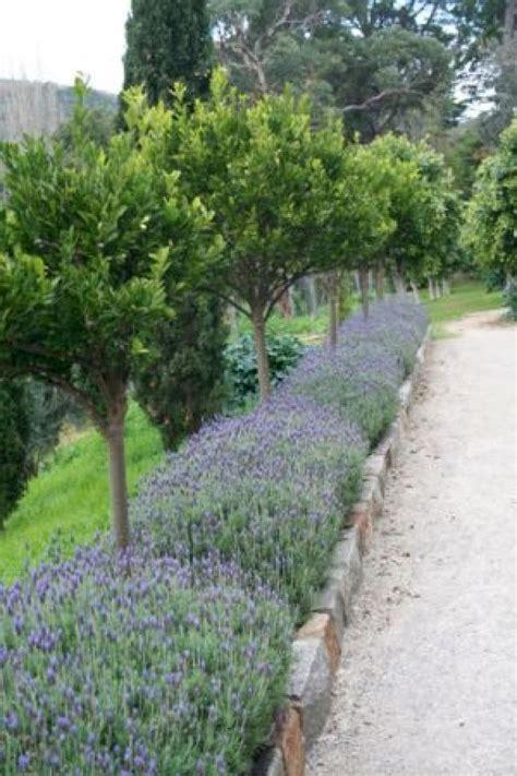gorgeous long driveway landscaping design ideas