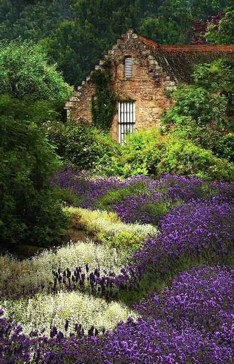 a cottage in the highlands of scotland fairytale