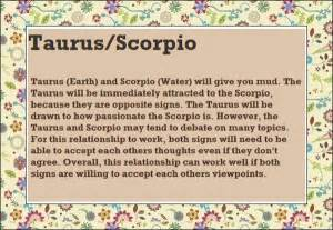 pin scorpio man taurus woman tumblr on pinterest