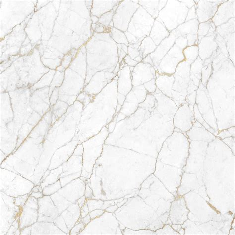 white pattern marble white italian marble honed marble calacatta borghini