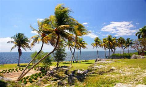 vista bmw coral springs palm springs fl official website maps autos post