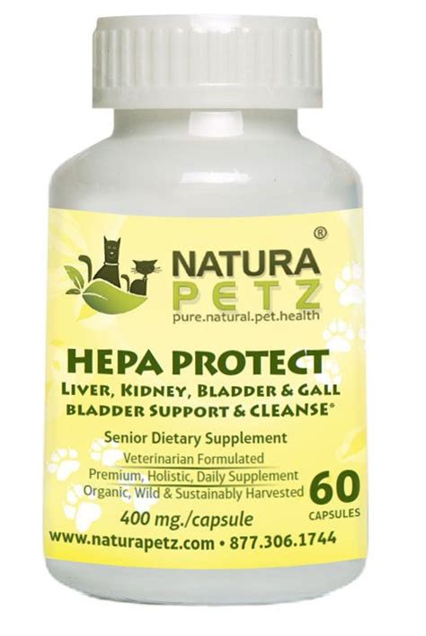 Liver And Kidney Detox For Dogs by 9 Best Images About Hepa Protect On Cats For