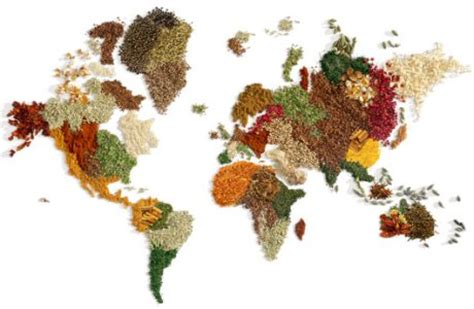il cibo e la cucina la storia della cucina 232 la storia mondo franchi