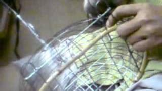download vidio membuat jebakan tikus download video cara membuat jerat burung sederhana dari