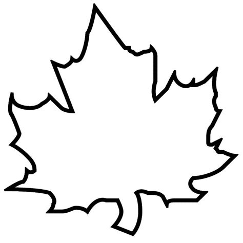 picture of maple leaf to color clipart best