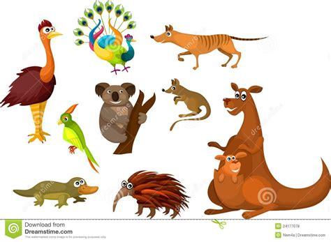 Australian Animal Wall Stickers animales australianos fotos de archivo libres de regal 237 as