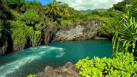 Search Hawaii Hawaii Hotelroomsearch Net