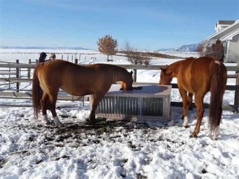 livestock and solar panels rangelands build a solar stock tank diy earth news