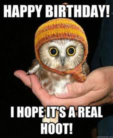 Happy Birthday Owl Meme - happy birthday memes images about birthday for everyone