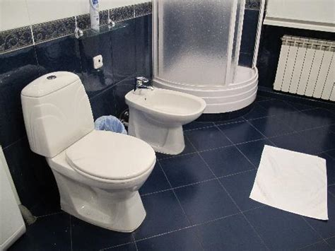 Separate Bidet Bathroom Has Bath Separate Shower Toilet Bidet Washing