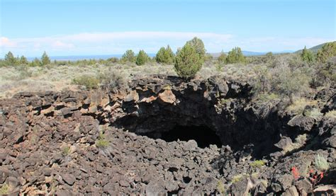 lava beds oregon lava beds national monument picture the animal kingdom