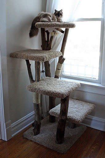 cat tree furniture foter