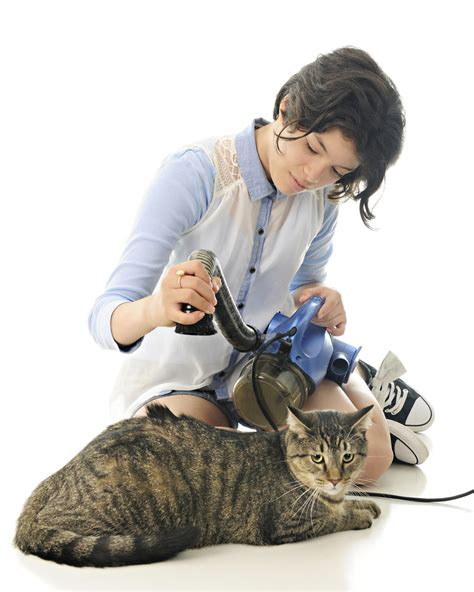 best vacuum for pet hair the top 10 best vacuum for pet hair you need to invest in