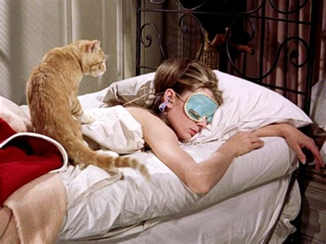 how to be great in bed for her 10 great films featuring cats bfi