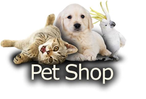 consult 243 rio e pet shop reino animal 3292 9181 click disk