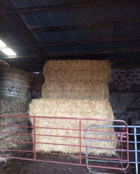 straw bedding straw bedding feeding for sale northern ireland farm