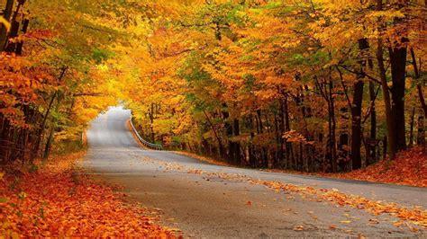 imagenes de paisajes relajantes hd paisajes relajantes fotos imagui