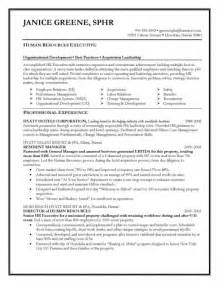 best executive resume writing service sles of resumes