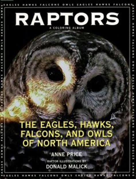 raptor apocalypse the raptor apocalypse books raptors the eagles hawks falcons and owls of