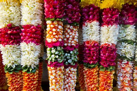 fiori indiani dadar flower market mumbai india stock photo offset