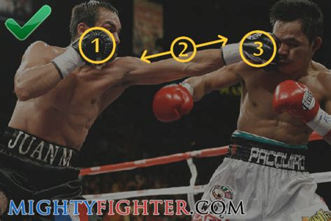 solar plexus punch boxing boxing masterclass how to throw a jab