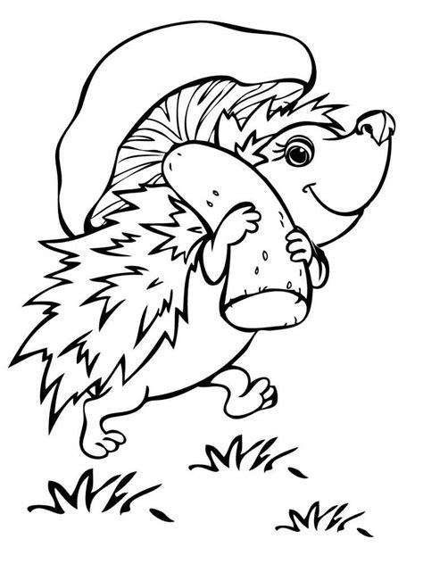 hedgehog coloring book for adults animal adults coloring book books hedgehog coloring pages and print hedgehog
