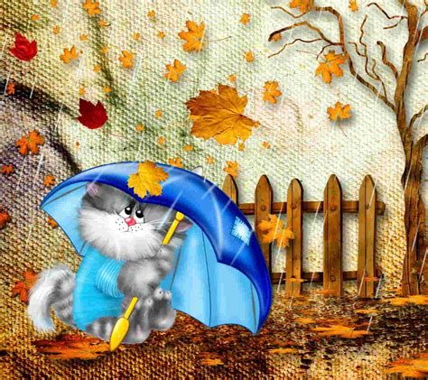 Cool Cat Trees 21 Autumn Backgrounds Fall Wallpapers Pictures Images