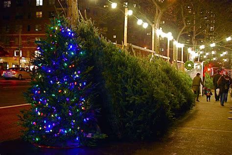 nyc nyc manhattan sidewalk christmas tree vendors