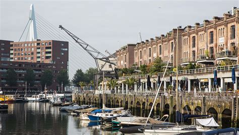 hotel rotterdam pincoffs best boutique hotel in rotterdam near erasmus