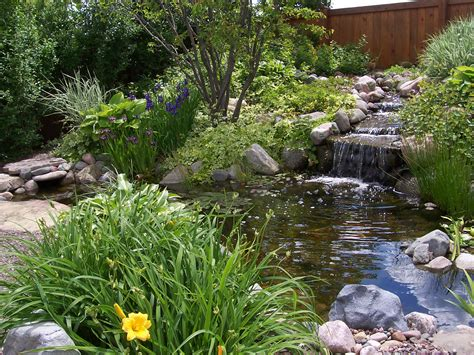 exterior backyard ponds water features fish pond liners