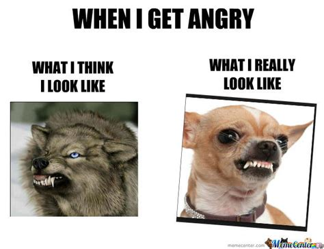 Mad Face Meme - angry face by kavinbubumitran meme center