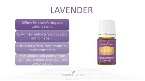 young living lavender essential oil 15ml lazada malaysia