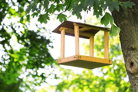 how to make a simple wooden bird feeder ebay