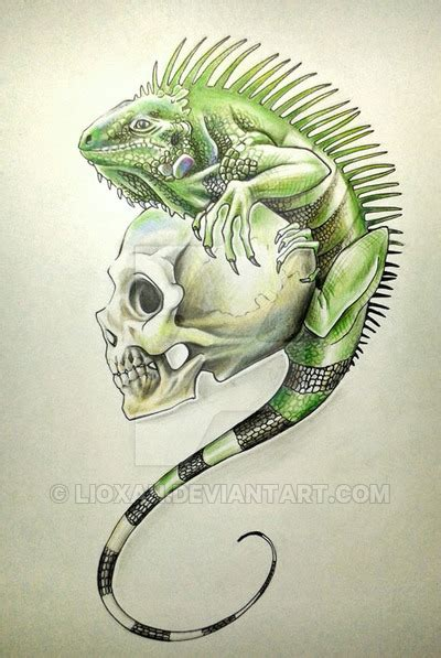 iguana and skull tattoo by lioxan on deviantart