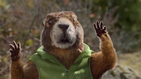 Will Cabelas Accept Bass Pro Gift Cards - marmot super bowl 2016 tv commercial fall in love ispot tv