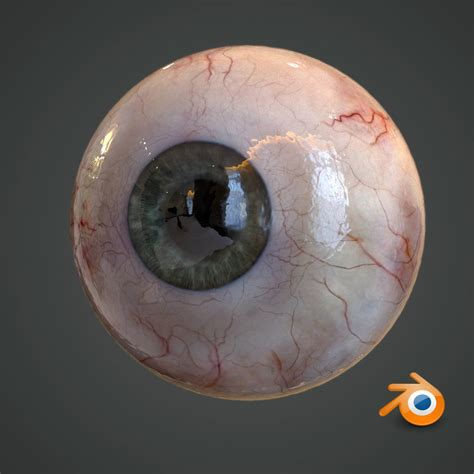 realistic human eye pupil  model turbosquid