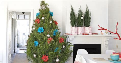 how to care for your potted christmas tree