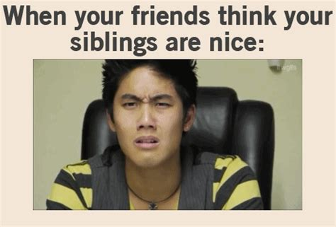 Funny Sibling Memes - when your friends think your siblings are nice meme