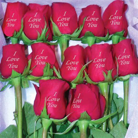 imagenes rosas para ti una rosa para ti