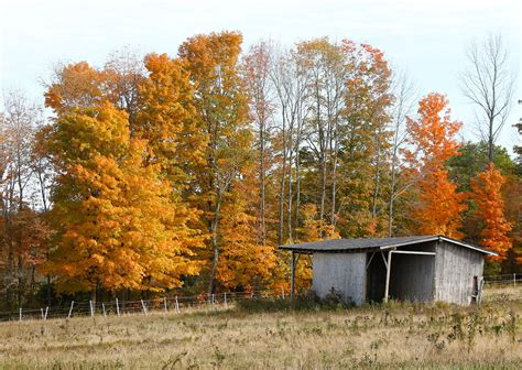 fall colors in maine central maine is bursting with fall color the portland