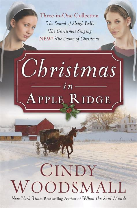 libro the christmas story an 294 best books amish images on books to read libros and romances
