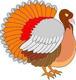 turkey6
